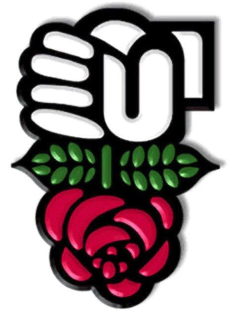 parti-socialiste-rose-logo.jpg